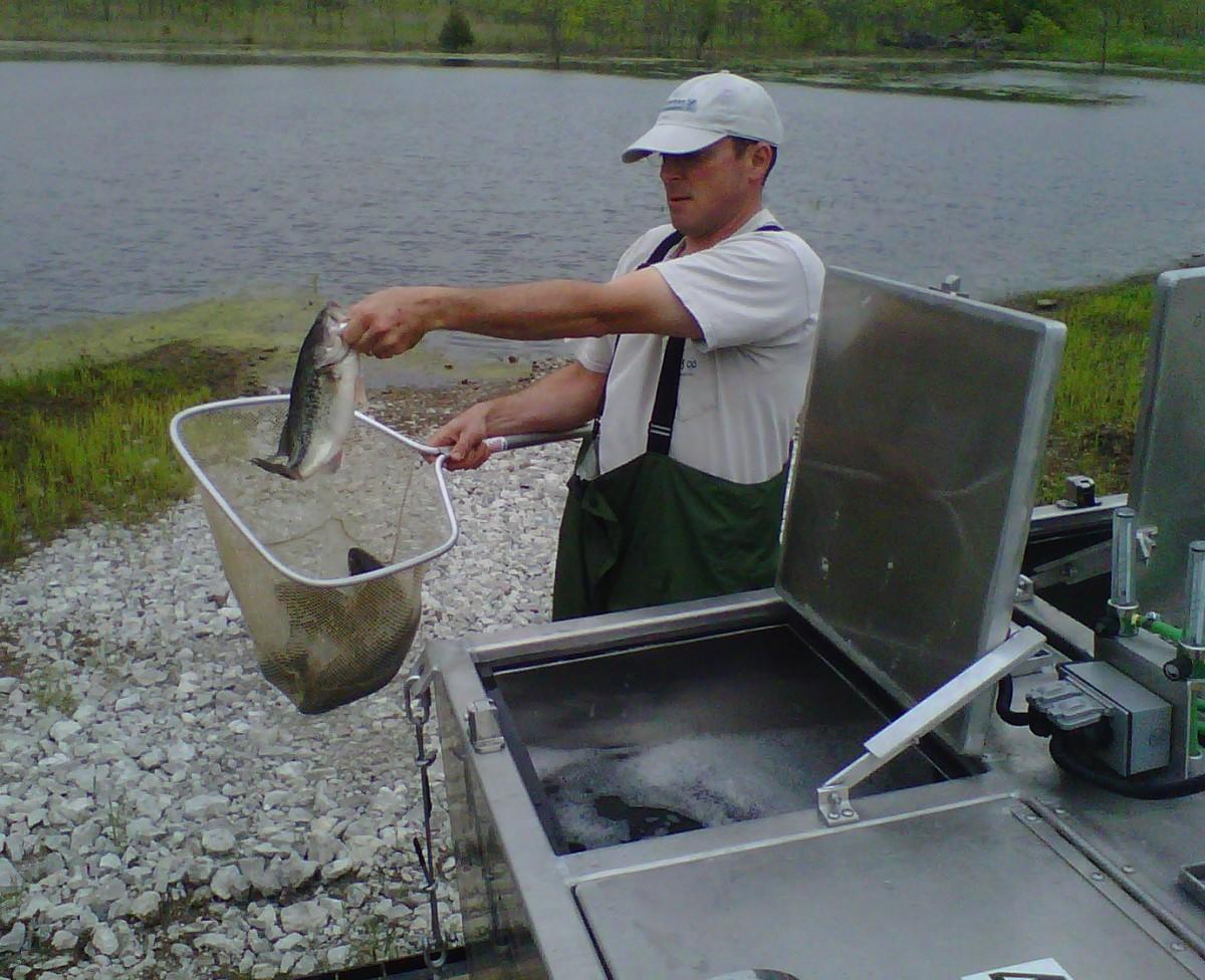 Pond And Lake Fish Stocking Midwest Lake