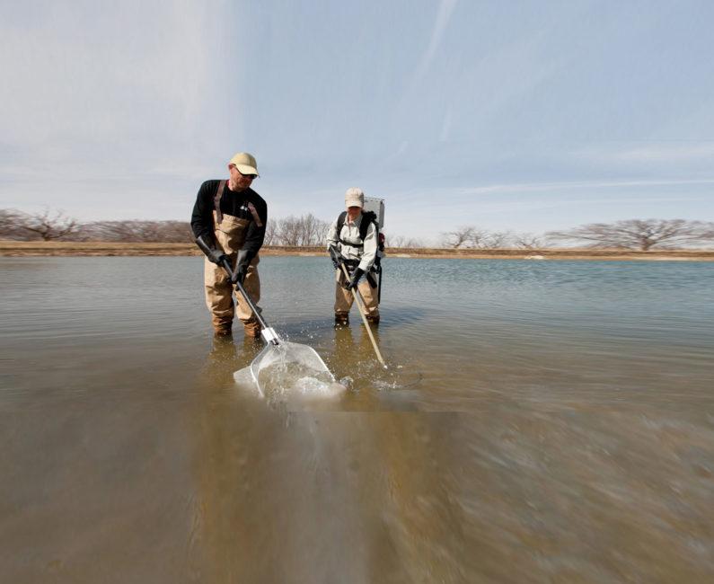 Midwest Lake Backpack Electrofisher