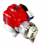 Generator for the Electrofishing Backpack Shocker